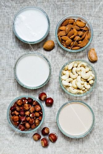 Hazelnut milk, almond milk and cashew milk