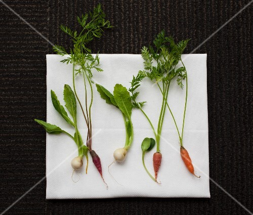 Baby carrots and turnips on a white cloth
