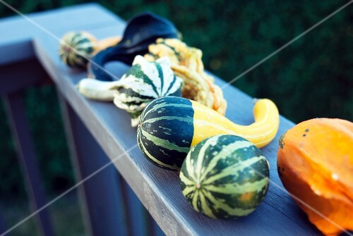 Various types of squash on a balcony ledge