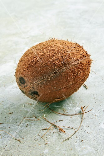 Whole Coconut on White
