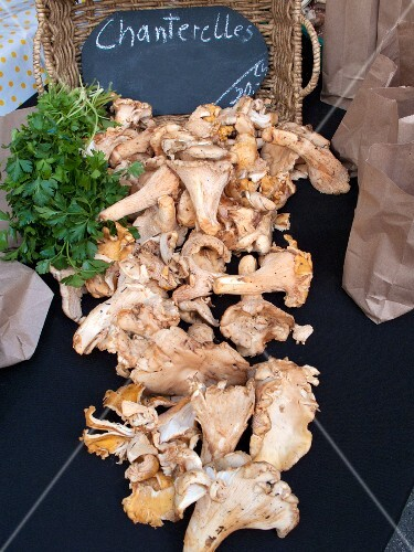 Chanterelle mushrooms at a farmers market