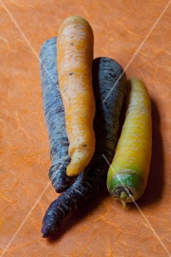 Coloured carrots on orange paper