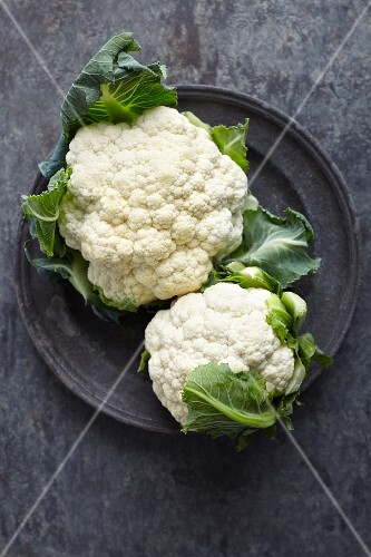 Two fresh cauliflowers on a metal plate (seen from above)