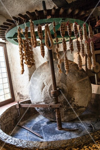 Air-dried salami hanging in an old oil mill
