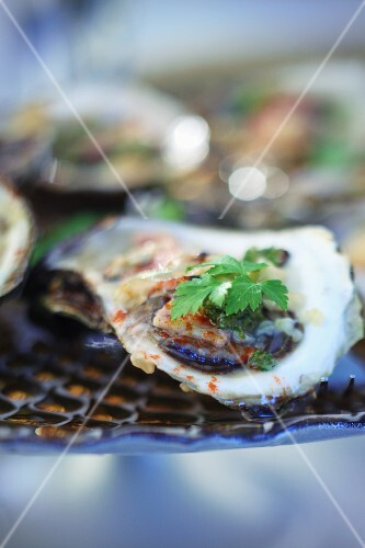 Oysters with herbs (close-up)