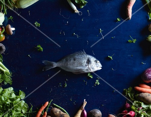 A sea bream in the middle of a blue table surrounded by vegetables