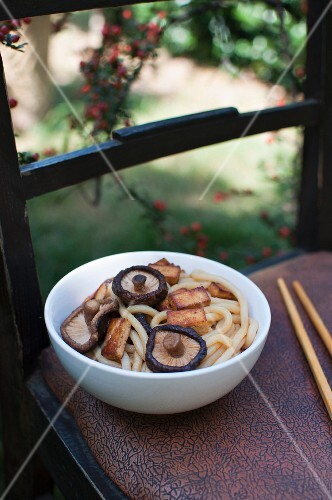 Udon noodles with tofu and shiitake mushrooms