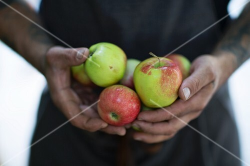 A man holding apples