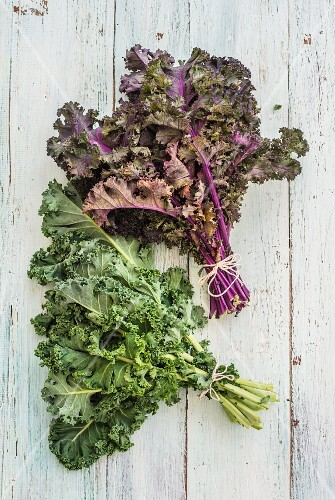 Bundles of green and purple kale