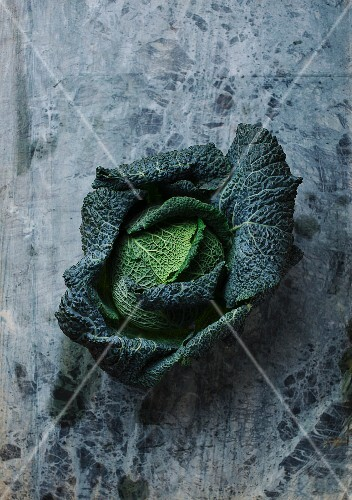 Savoy cabbage on a rough grey surface