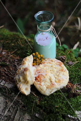 Yeast pastries with a bottle of milk on a moosy log