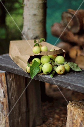 Mini apples and a paper bag on a wooden bench in a garden