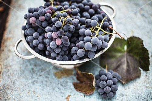 Red grapes in a metal bowl