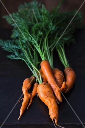 Fresh organic carrots on a dark surface