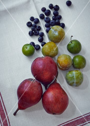 Pears, greengages and blueberries on a white tea towel