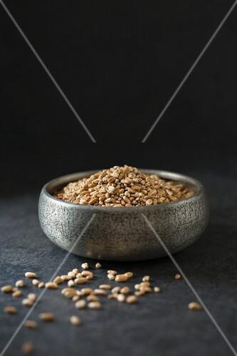 A bowl of spelt seeds
