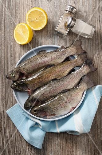 Fresh trout, lemon, salt and pepper