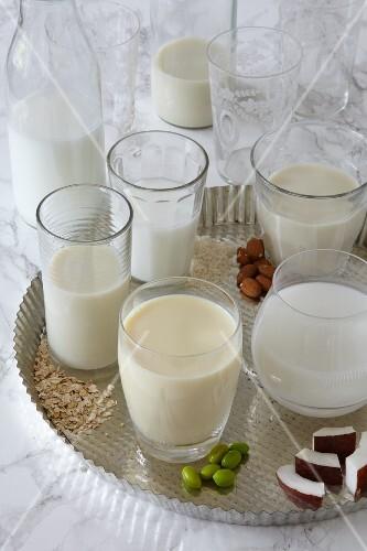 Various vegan milks in glasses on a tray