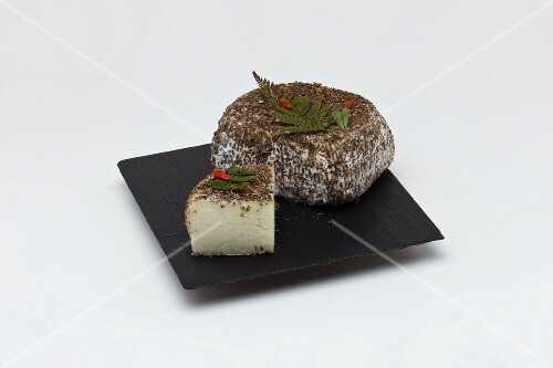 Brin de Maquis (Cheese from the region de Furiani, Haute-Corse)