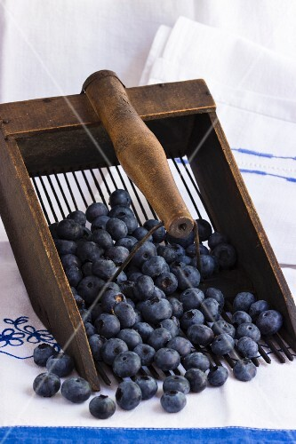 Blueberries in a blueberry rake on an embroidered cloth