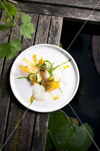Char, lovage, salted lemons and courgette from the restaurant Saziani Stub'n, Styria, Austria