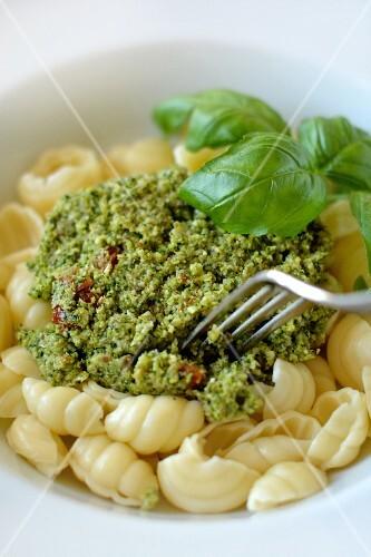 Shell pasta with broccoli pesto