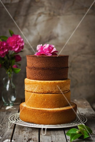 A multi-tier sponge cake on a wire rack