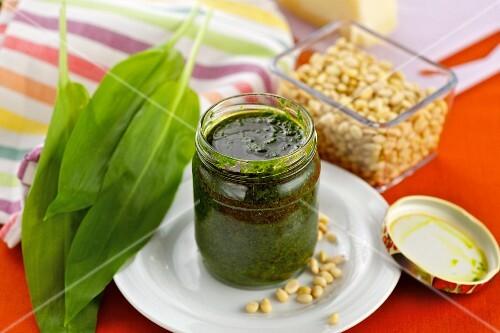 Wild garlic pesto and ingredients