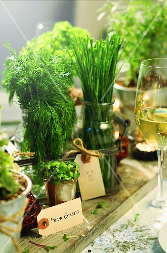 Various herbs in glasses and metal containers in the middle of the table