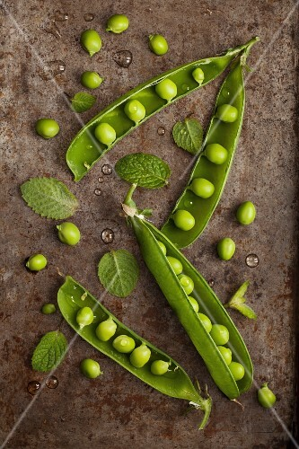 Fresh peas, pea pods and mint on a rustic metal tray