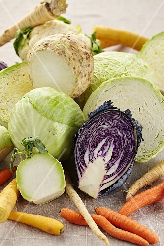 Cabbages and turnips (winter vegetables)
