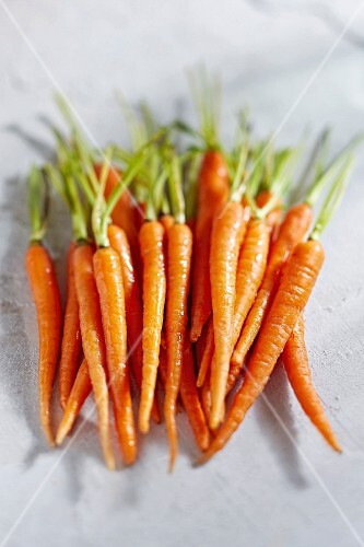 Young carrots (seen from above)