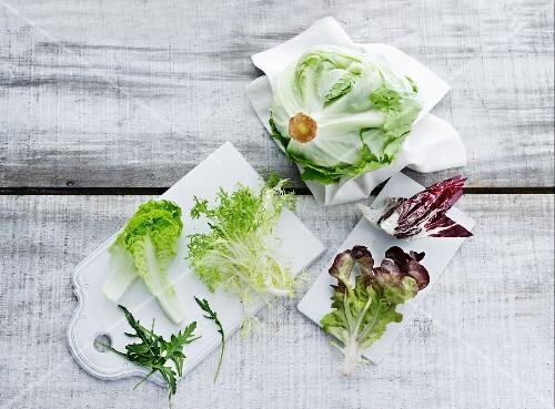 An arrangement of lettuce leaves