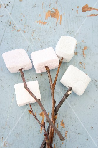 Marshmallows on twigs