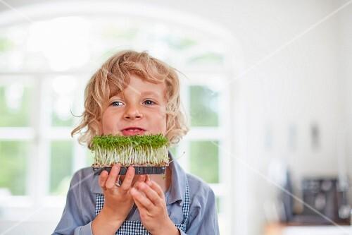A little boy in a kitchen holding fresh cress