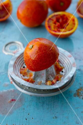 An arrangement of blood oranges and an orange press