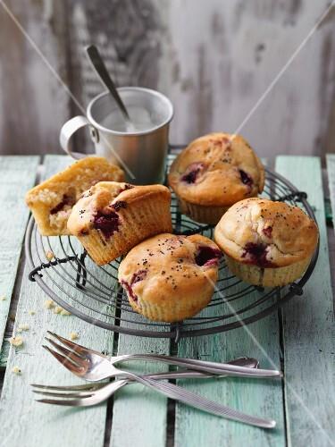 Lemon mate tea muffins