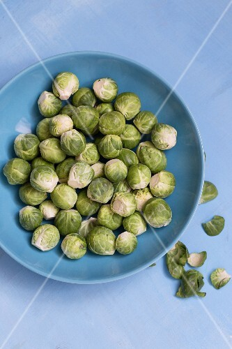 Brussels sprouts on a blue plate