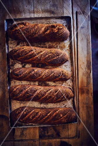 Freshly baked bread on a baking tray