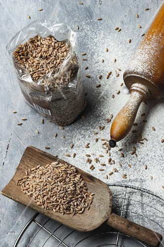 Spelt grains on a wooden scoop and in a plastic bag next to a rolling pin