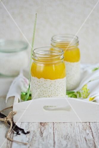 Tapioca pudding with mango