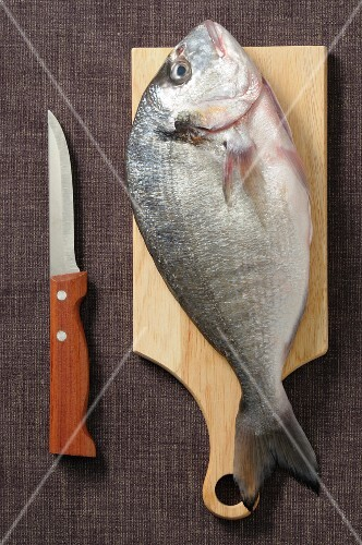 Seabream on a wooden board next to a knife