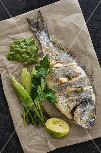 Gilthead seabream with fennel and parsley pesto