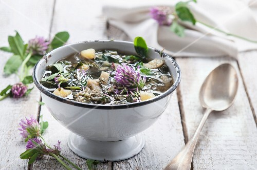 Vegetable soup with clover flowers
