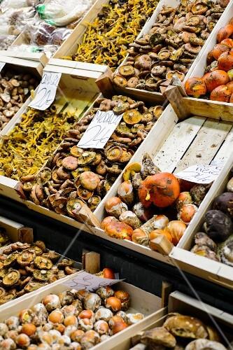 Various mushrooms in crates at La Boqueria market in the Ciutat Vella district of Barcelona, Catalonia, Spain