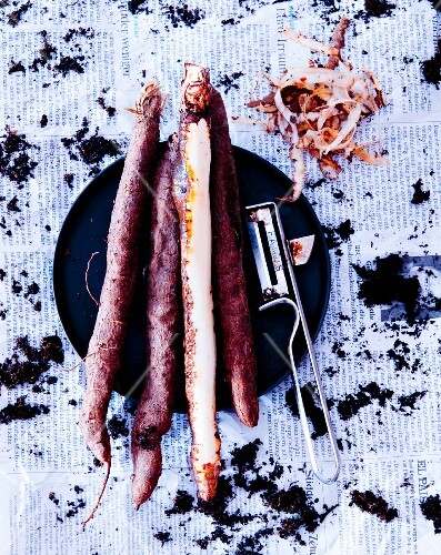Black salsify, one spear peeled (seen from above)