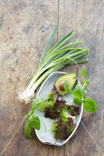 Lettuce, avocado, spring onions and basil