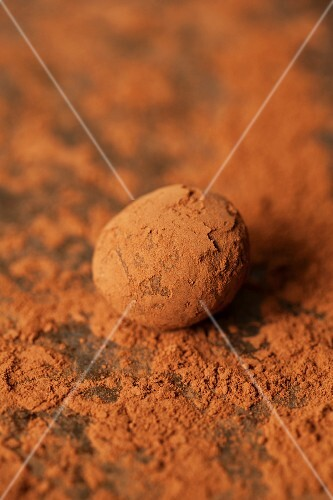 A chocolate truffle rolled in cocoa powder