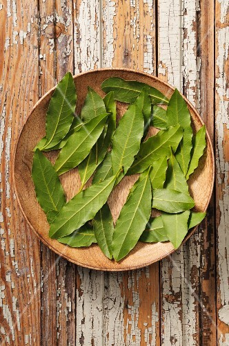Fresh bay leaves on a wooden plate