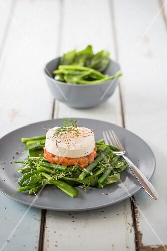 Salmon tatar with horseradish foam on green vegetables
